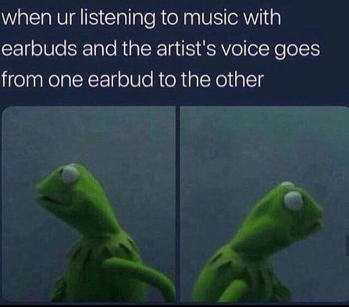 Organism - when ur listening to music with earbuds and the artist's voice goes from one earbud to the other