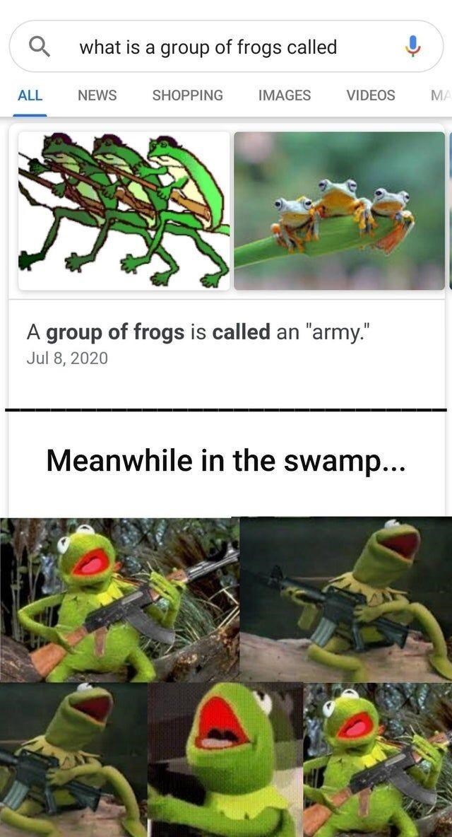"""Green - what is a group of frogs called ALL NEWS SHOPPING IMAGES VIDEOS MA A group of frogs is called an """"army."""" Jul 8, 2020 Meanwhile in the swamp..."""