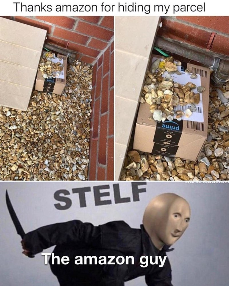 Product - Thanks amazon for hiding my parcel prime prime STELF The amazon guy