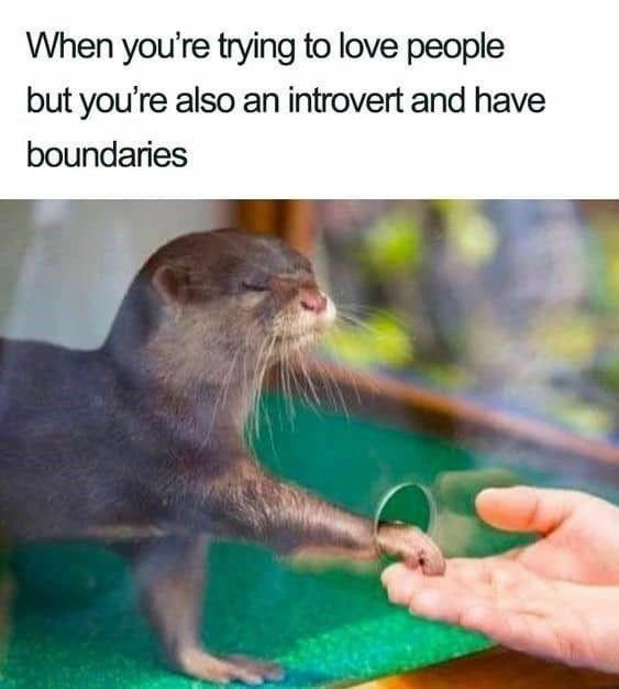 Nature - When you're trying to love people but you're also an introvert and have boundaries