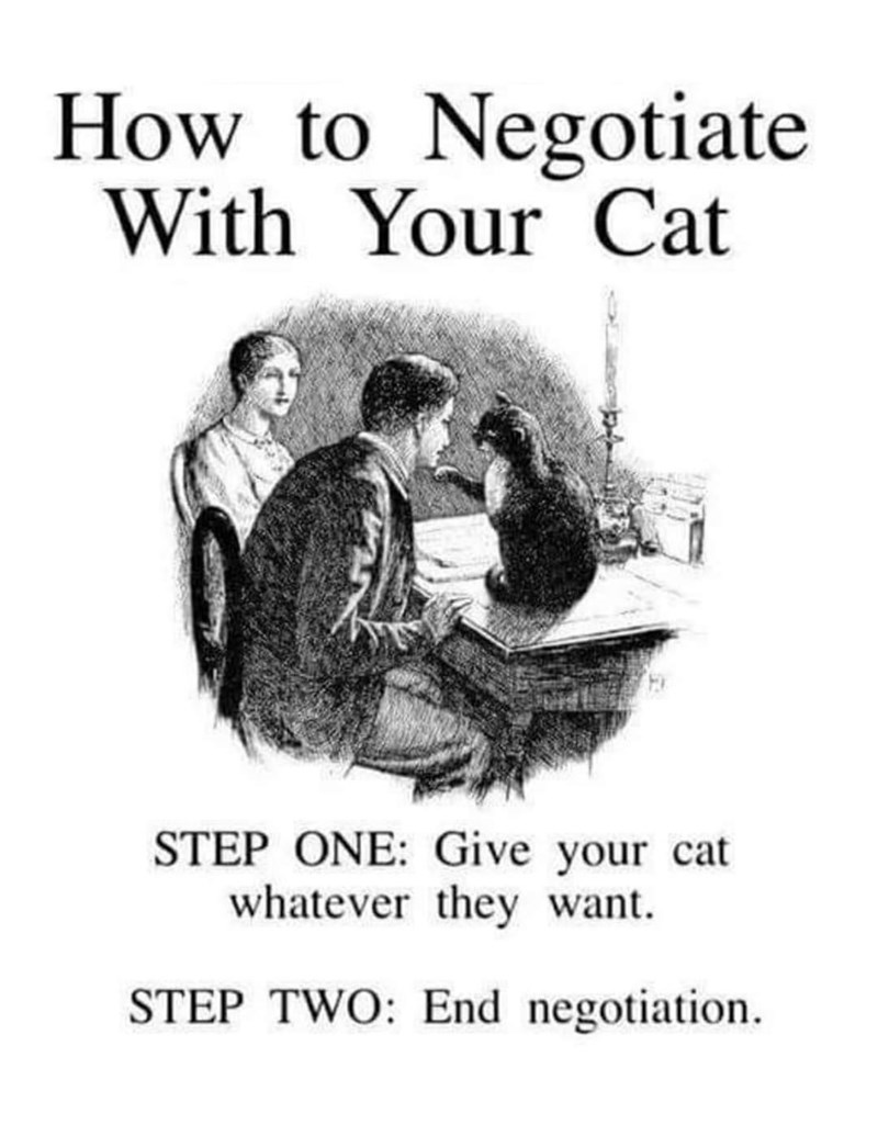 Font - How to Negotiate With Your Cat STEP ONE: Give your cat whatever they want. STEP TWO: End negotiation.
