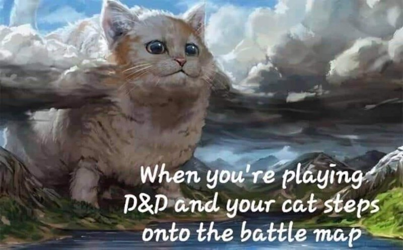 Cloud - When you're pláying P&P and your cat steps onto the battle map