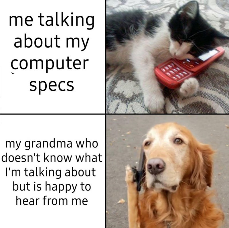 Dog - me talking about my computer specs my grandma who doesn't know what I'm talking about but is happy to hear from me