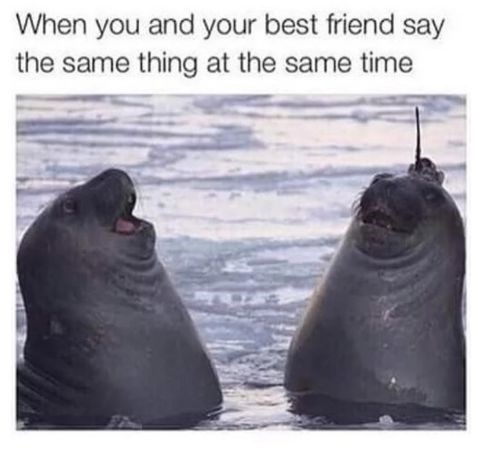 Water - When you and your best friend say the same thing at the same time