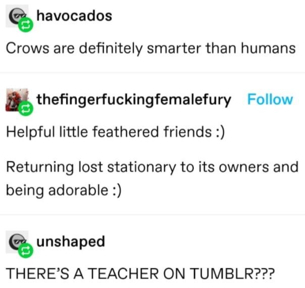 Font - havocados Crows are definitely smarter than humans thefingerfuckingfemalefury Follow Helpful little feathered friends :) Returning lost stationary to its owners and being adorable :) unshaped THERE'S A TEACHER ON TUMBLR???