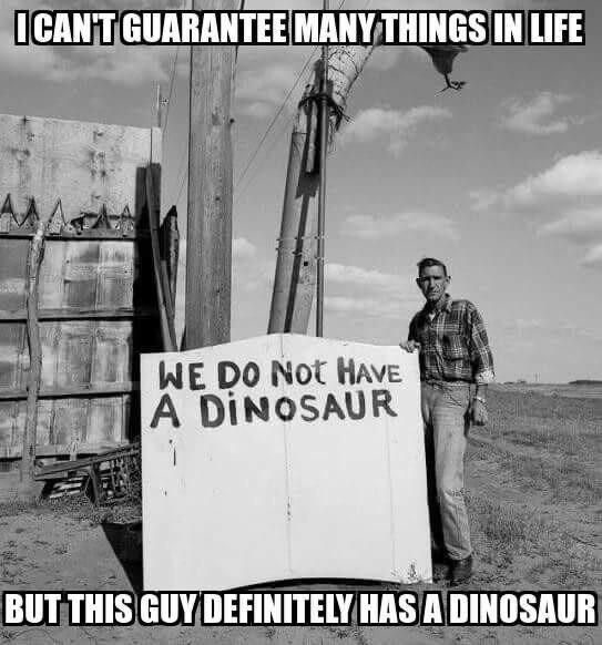 Sky - ICANT GUARANTEE MANY THINGS IN LIFE WE DO Not HAVE A DINOSAUR BUT THIS GUY DEFINITELY HAS A DINOSAUR
