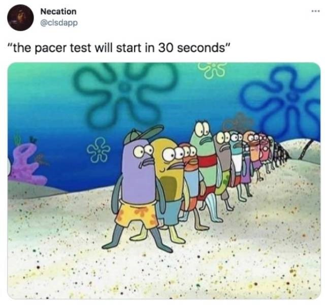 """Product - Necation ... @cisdapp """"the pacer test will start in 30 seconds"""""""