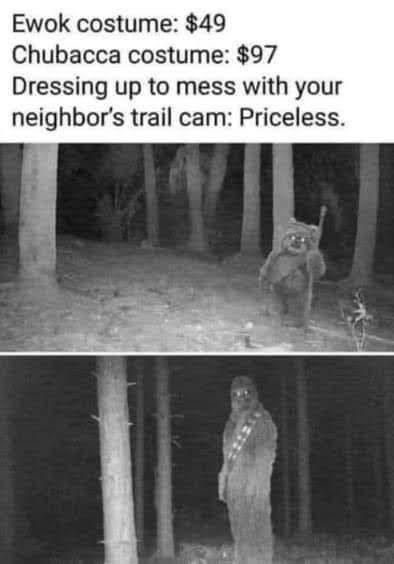 Black - Ewok costume: $49 Chubacca costume: $97 Dressing up to mess with your neighbor's trail cam: Priceless.
