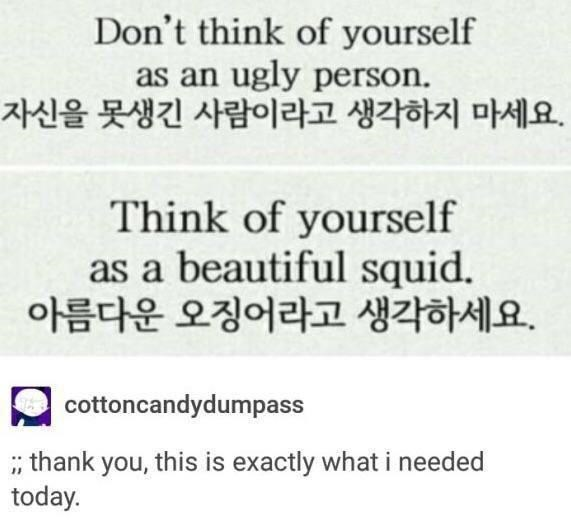 Rectangle - Don't think of yourself as an ugly person. 자신을 못생긴 사람이라고 생각하지 마세요. Think of yourself as a beautiful squid. 아름다운 오징어라고 생각하세요. cottoncandydumpass , thank you, this is exactly what i needed today.