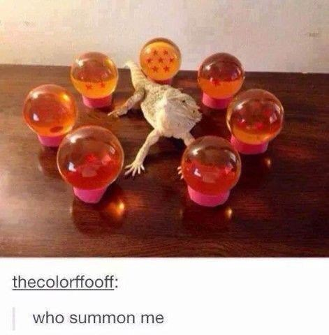 Drinkware - thecolorffooff: who summon me