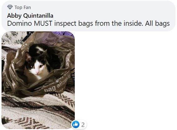Cat - Top Fan Abby Quintanilla Domino MUST inspect bags from the inside. All bags ag ailowe 2