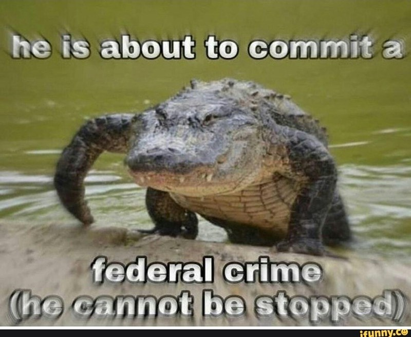 Water - he is about to commit a federal crime (he cannot be stopped) ifunny.co