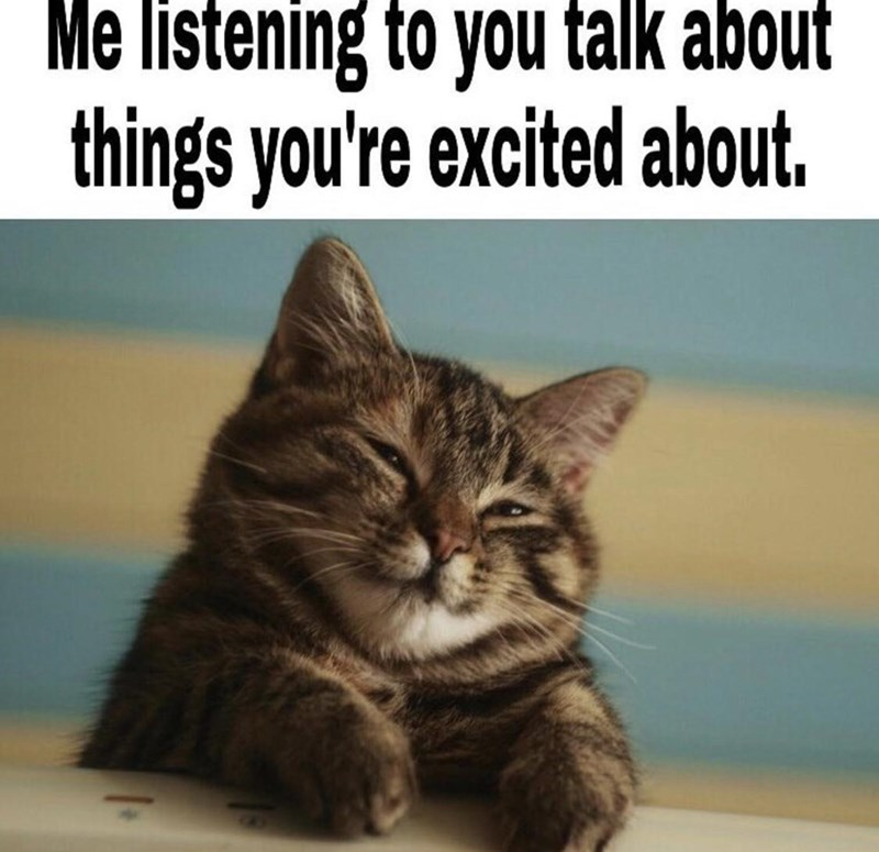 Cat - Me listening to you talk about things you're excited about.