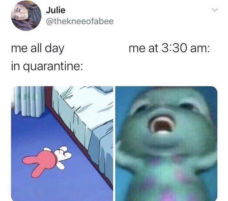 Vertebrate - Julie @thekneeofabee me all day me at 3:30 am: in quarantine: