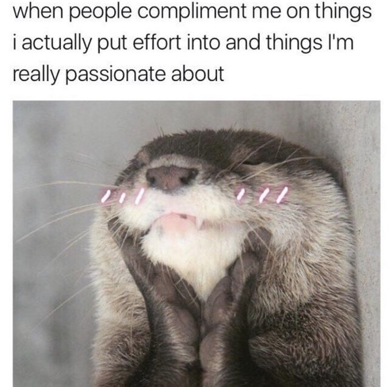 Cat - when people compliment me on things i actually put effort into and things l'm really passionate about