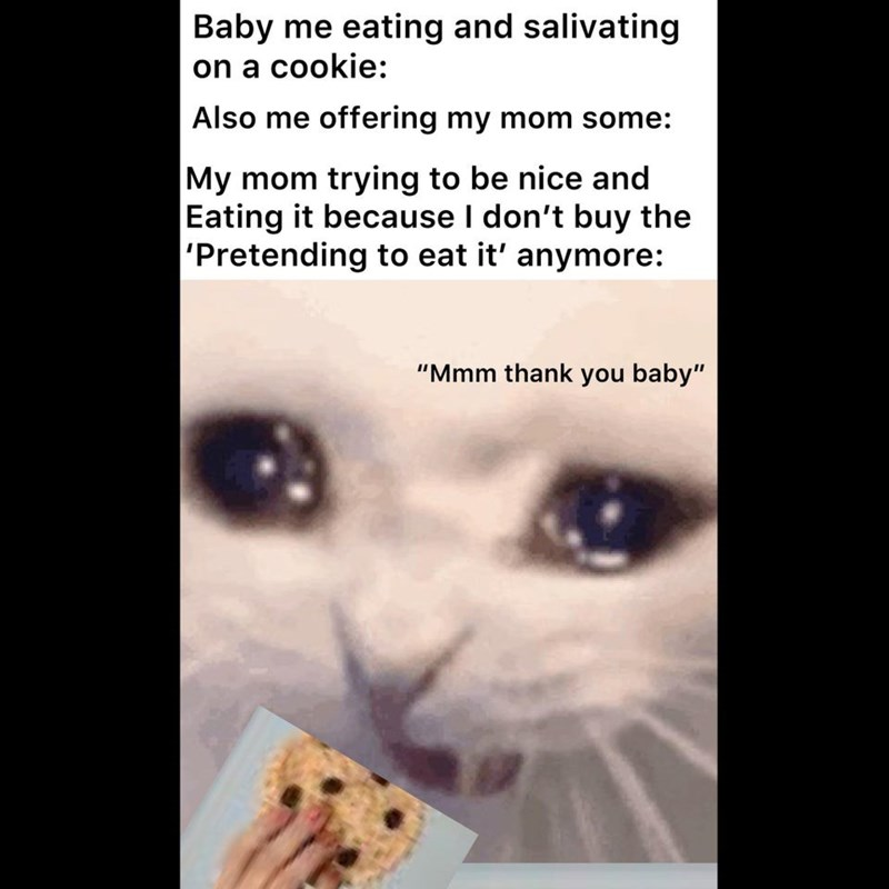 """Mammal - Baby me eating and salivating on a cookie: Also me offering my mom some: My mom trying to be nice and Eating it because I don't buy the 'Pretending to eat it' anymore: """"Mmm thank you baby"""""""