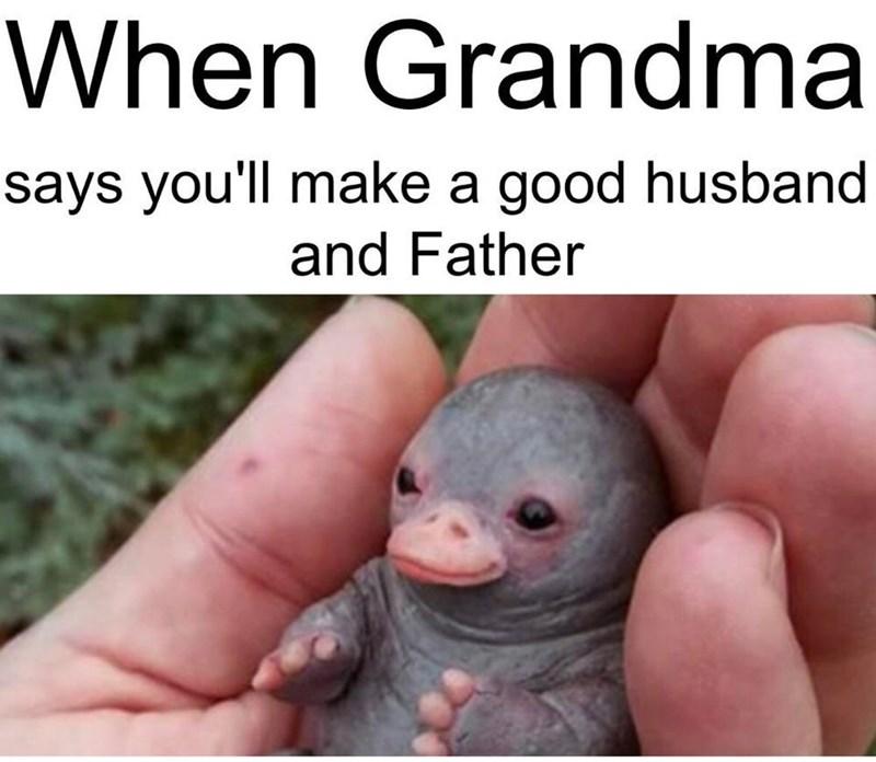 Hand - When Grandma says you'll make a good husband and Father