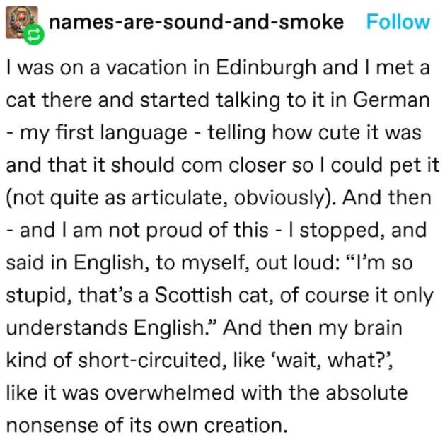"""Font - names-are-sound-and-smoke Follow I was on a vacation in Edinburgh and I met a cat there and started talking to it in German - my first language - telling how cute it was and that it should com closer so I could pet it (not quite as articulate, obviously). And then - and I am not proud of this - I stopped, and said in English, to myself, out loud: """"I'm so stupid, that's a Scottish cat, of course it only understands English."""" And then my brain kind of short-circuited, like 'wait, what?', li"""