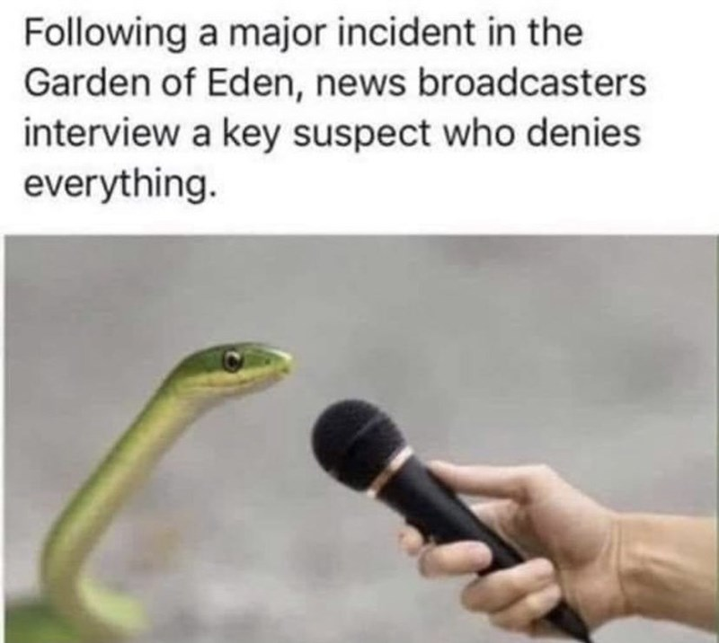 Organism - Following a major incident in the Garden of Eden, news broadcasters interview a key suspect who denies everything.