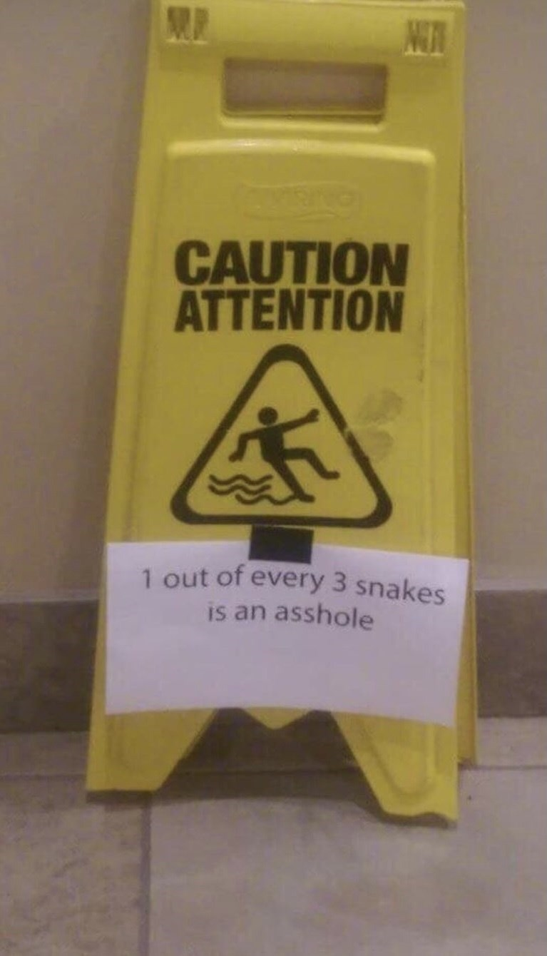 Font - NUR CAUTION ATTENTION 1 out of every 3 snakes is an asshole