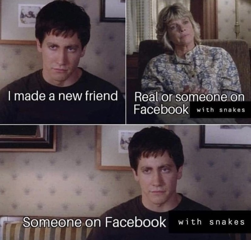Forehead - I made a new friend| Real or someone on Facebook with snakes Someone on Facebook with snakes