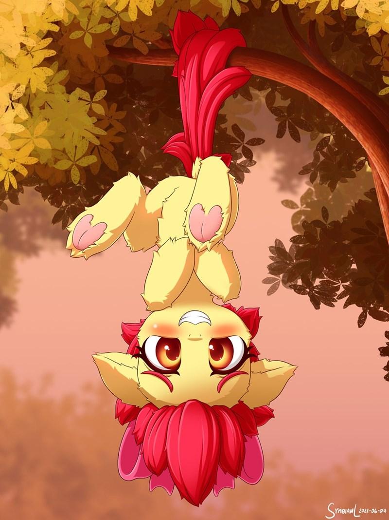 apple bloom symbianl - 9615961088
