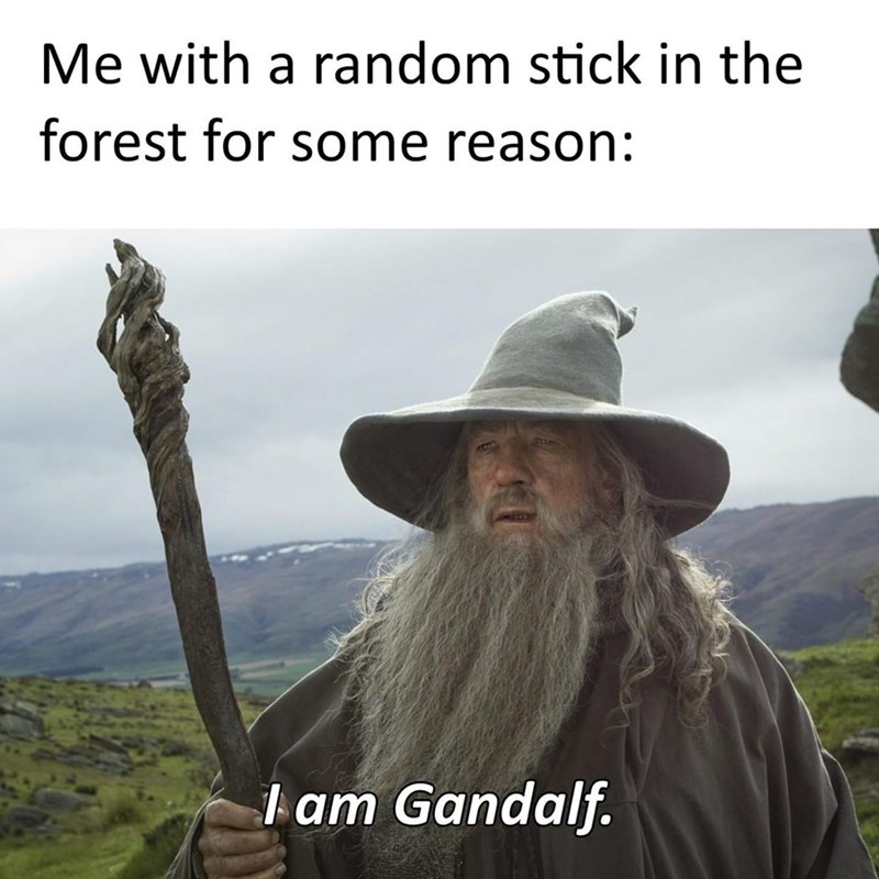 Mountain - Me with a random stick in the forest for some reason: Iam Gandalf.