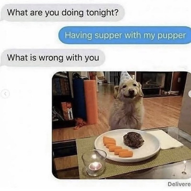 Food - What are you doing tonight? Having supper with my pupper What is wrong with you Delivere