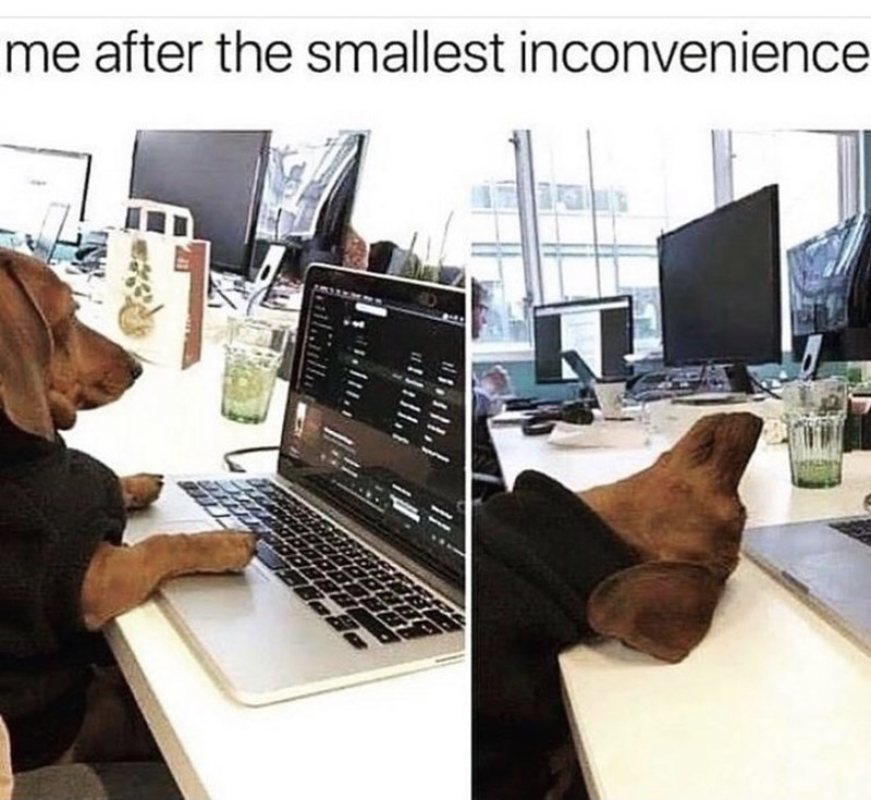 Computer - me after the smallest inconvenience