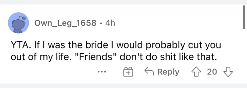 """Rectangle - Own_Leg_1658 · 4h YTA. If I was the bride I would probably cut you out of my life. """"Friends"""" don't do shit like that. G Reply 1 20 3 ..."""