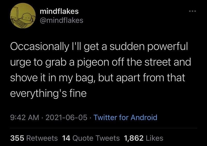 Font - mindflakes @mindflakes Occasionally l'l get a sudden powerful urge to grab a pigeon off the street and shove it in my bag, but apart from that everything's fine 9:42 AM · 2021-06-05 · Twitter for Android 355 Retweets 14 Quote Tweets 1,862 Likes