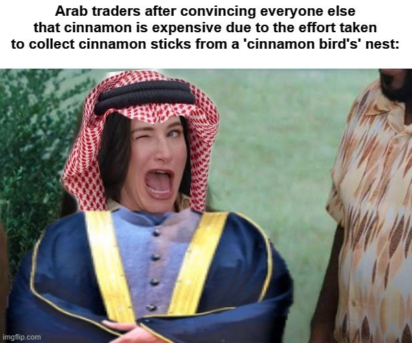 Sleeve - Arab traders after convincing everyone else that cinnamon is expensive due to the effort taken to collect cinnamon sticks from a 'cinnamon bird's' nest: imgflip.com