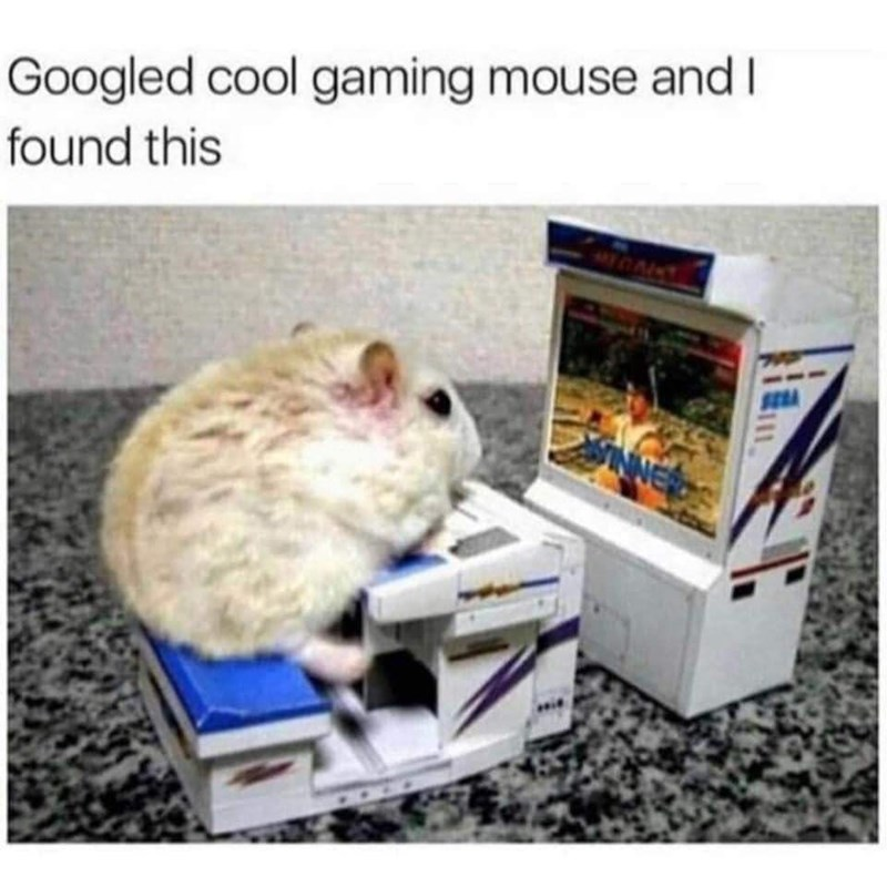Rat - Googled cool gaming mouse and I found this INNE