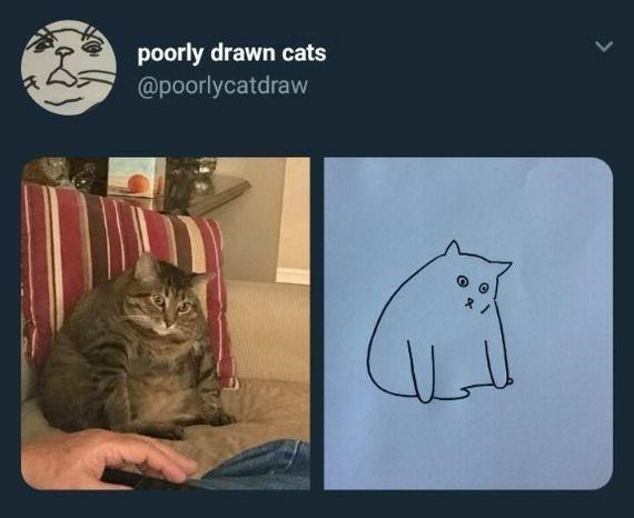 Cat - poorly drawn cats @poorlycatdraw