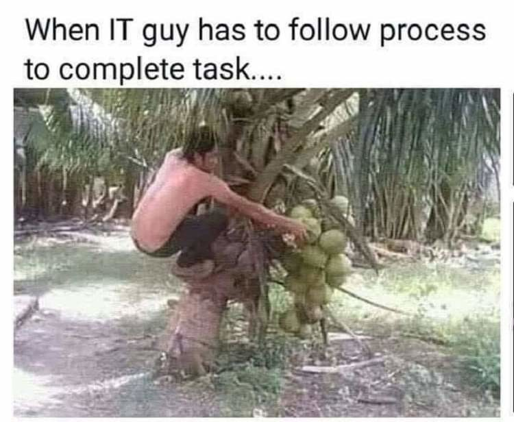 Plant - When IT guy has to follow process to complete task....