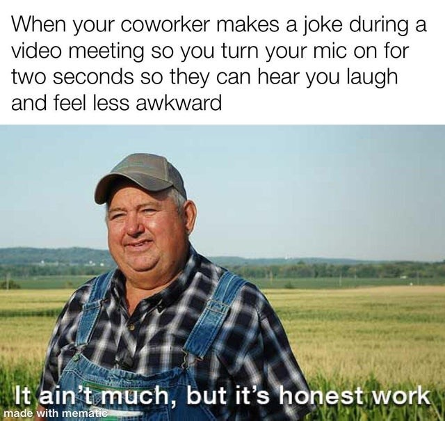 wholesome memes for feeling nice - Plant - When your coworker makes a joke during a video meeting so you turn your mic on for two seconds so they can hear you laugh and feel less awkward It ain't much, but it's honest work made with mematic