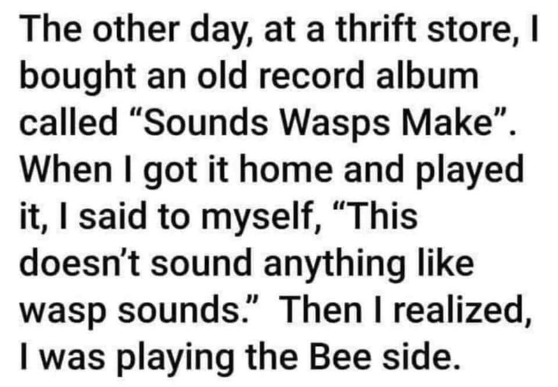 """Font - The other day, at a thrift store, I bought an old record album called """"Sounds Wasps Make"""". When I got it home and played it, I said to myself, """"This doesn't sound anything like wasp sounds."""" Then I realized, I was playing the Bee side."""