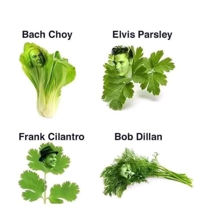 Green - Bach Choy Elvis Parsley Frank Cilantro Bob Dillan