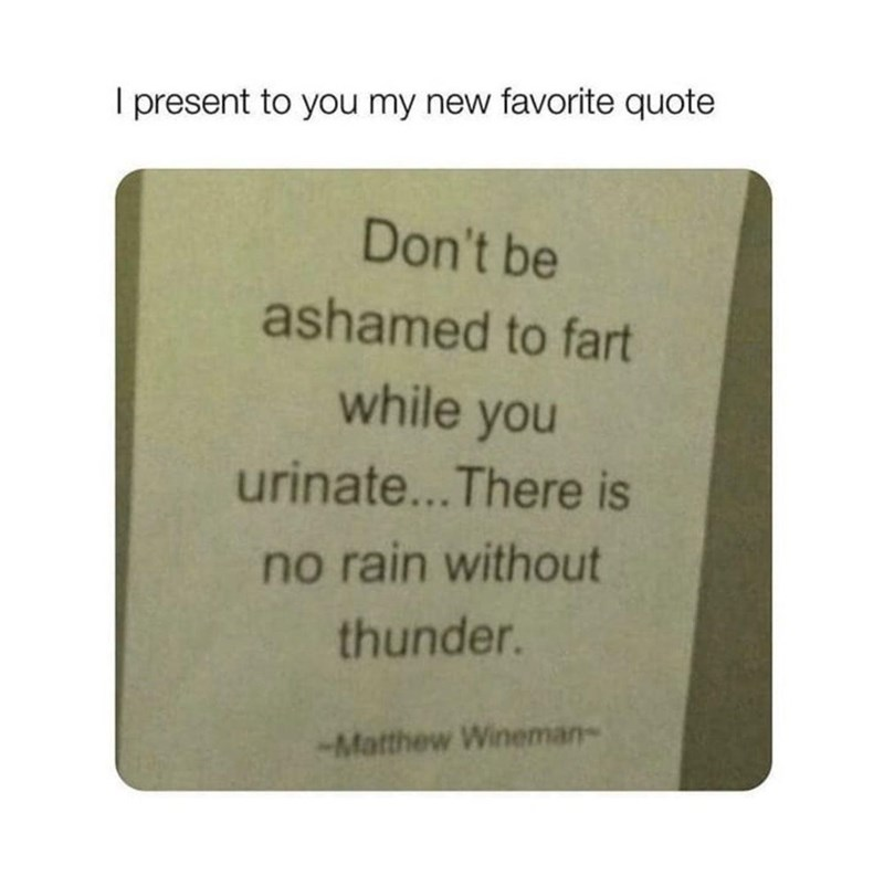 Rectangle - I present to you my new favorite quote Don't be ashamed to fart while you urinate...There is no rain without thunder. -Matthew Wineman-