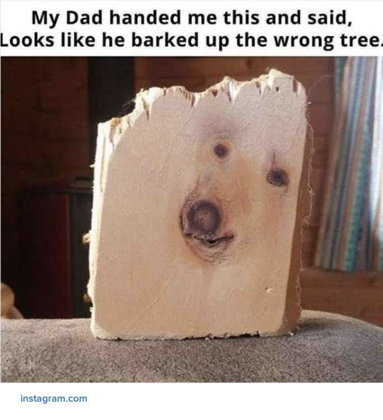 Wood - My Dad handed me this and said, Looks like he barked up the wrong tree. instagram.com