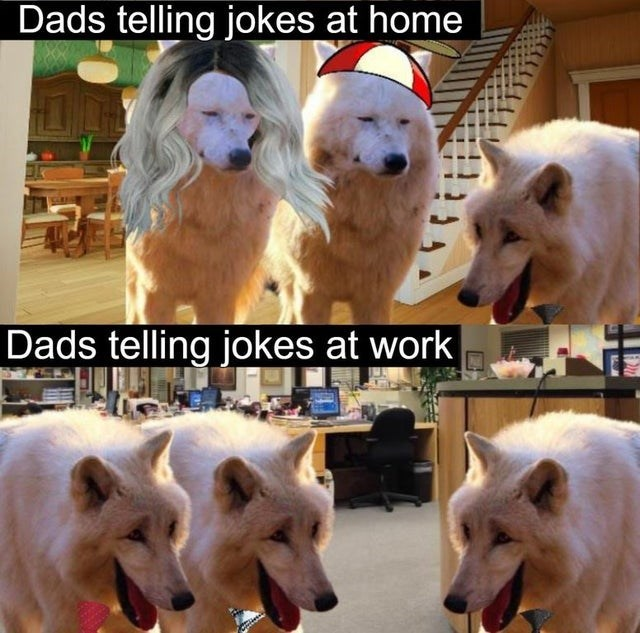 Dog - Dads telling jokes at home Dads telling jokes at work