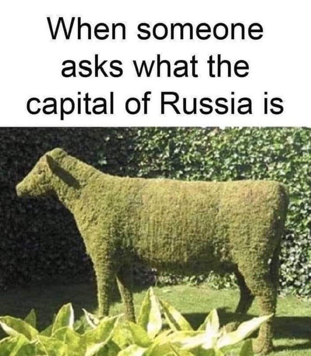 Plant - When someone asks what the capital of Russia is