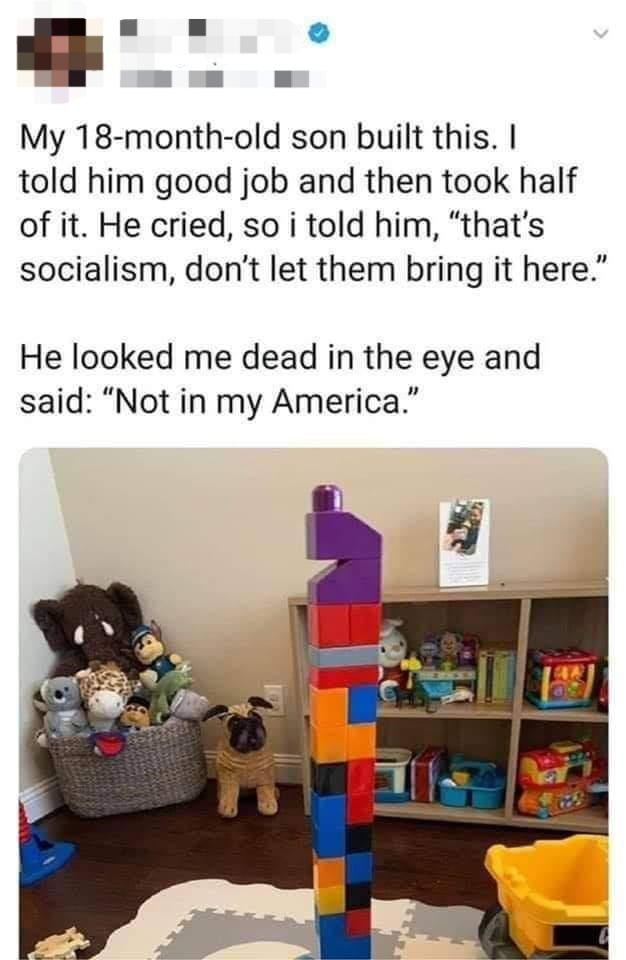 """Furniture - My 18-month-old son built this. I told him good job and then took half of it. He cried, so i told him, """"that's socialism, don't let them bring it here."""" He looked me dead in the eye and said: """"Not in my America."""""""