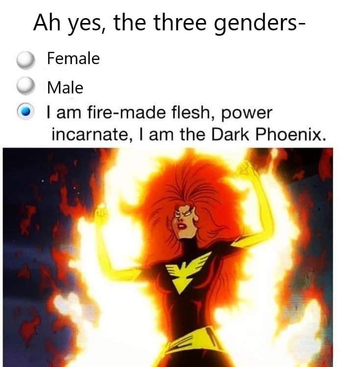 Sleeve - Ah yes, the three genders- Female Male I am fire-made flesh, power incarnate, I am the Dark Phoenix.