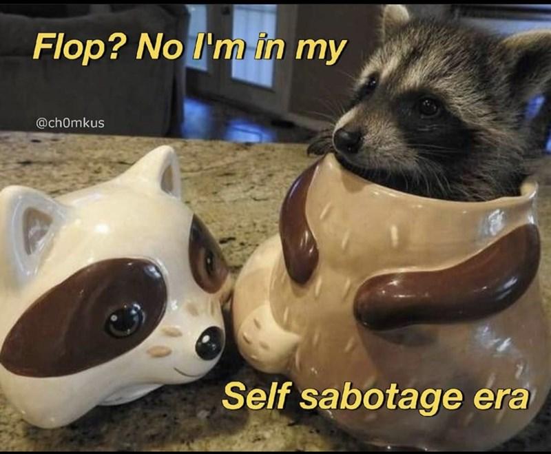 Carnivore - Flop? No I'm in my @ch0mkus Self sabotage era