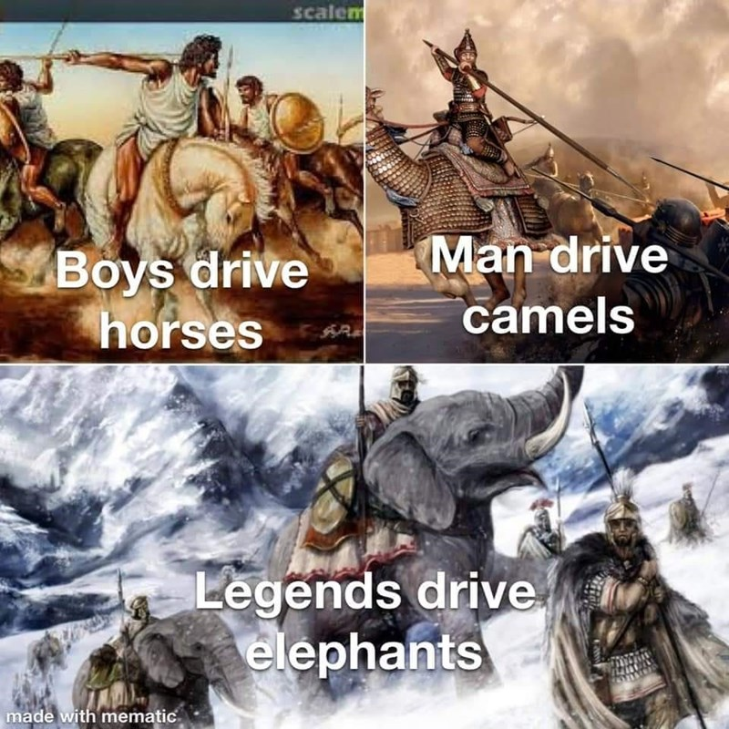 Vertebrate - scalem Man drive Boys drive horses camels Legends drive elephants made with mematic