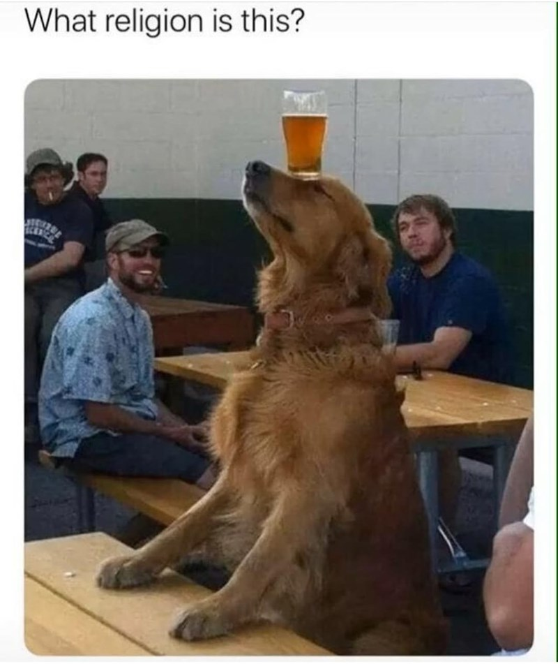 Dog - What religion is this?