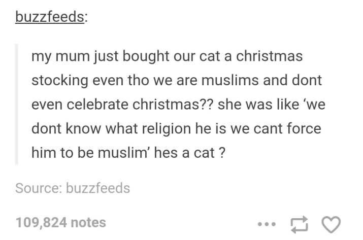 Font - buzzfeeds: my mum just bought our cat a christmas stocking even tho we are muslims and dont even celebrate christmas?? she was like 'we dont know what religion he is we cant force him to be muslim' hes a cat ? Source: buzzfeeds 109,824 notes