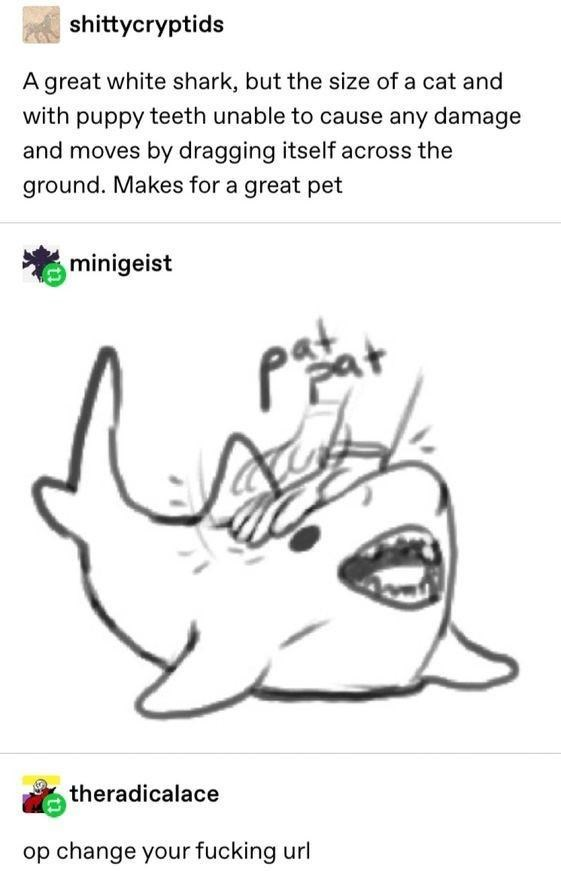 Nose - shittycryptids A great white shark, but the size of a cat and with puppy teeth unable to cause any damage and moves by dragging itself across the ground. Makes for a great pet minigeist theradicalace op change your fucking url