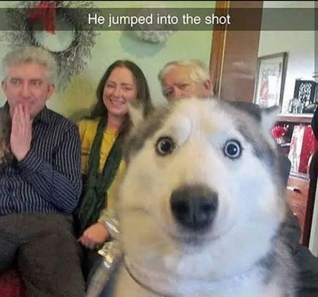 Hair - He jumped into the shot